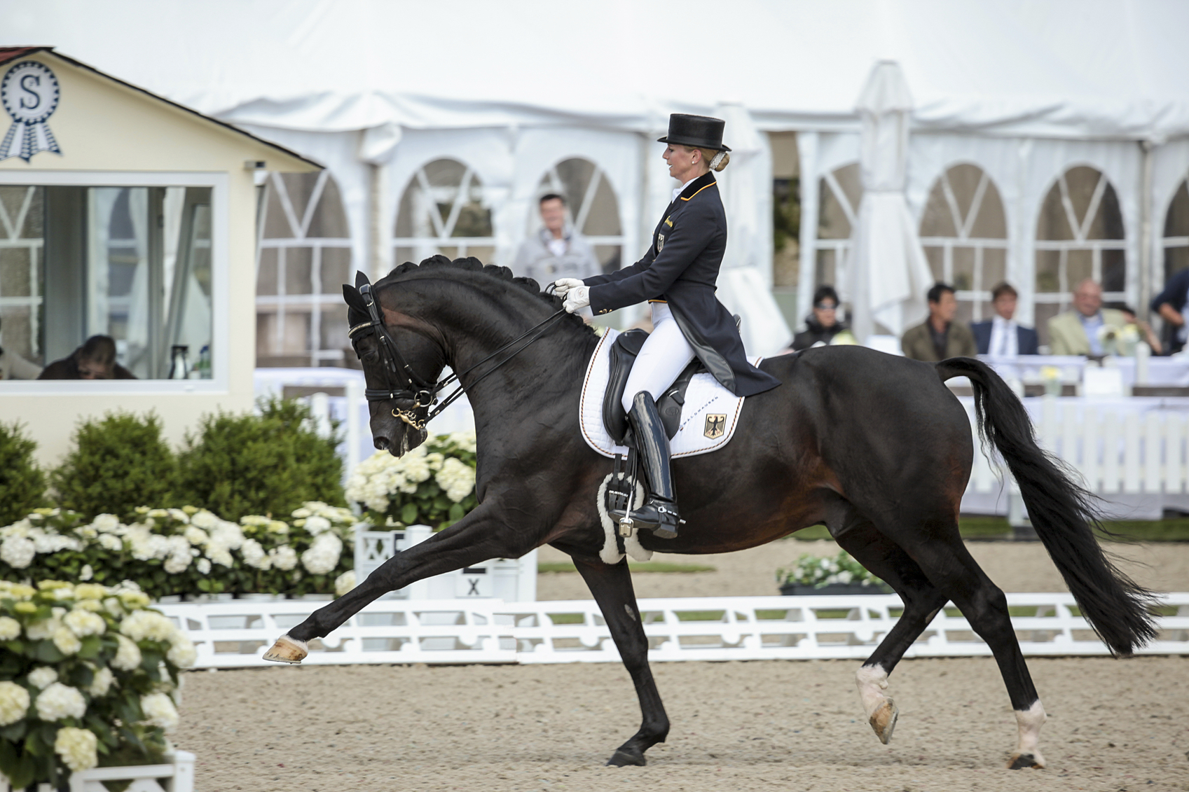Hagen, Germany - July 9, 2015: Jessica von Bredow-Werndl of Germany and her stallion Unee during the CDIO5* - FEI Grand Prix competition at the CDIO on July 9, 2015 in Hagen, Germany. Here in extended trot. Reached 3rd place.