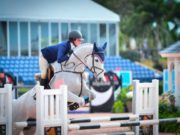 show jumping, WEF, Wellington